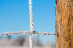 Close-up of a Fence Covered in Hoar Frost stock photo