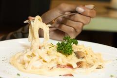 Close up fettucine spaghetti Stock Images