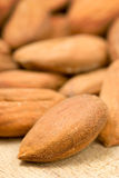 Close up of a  few almonds Royalty Free Stock Photo