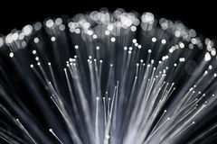 Close up of Fiber Optics Royalty Free Stock Photo