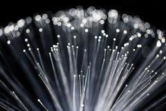Close up of Fiber Optics Royalty Free Stock Photo