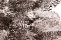 Close up of Fingerprints Royalty Free Stock Image
