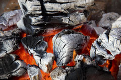 Close-up of fire. Burning brightly Stock Photo