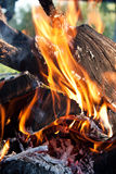 Close up fire Stock Photography