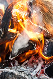 Close up fire Royalty Free Stock Photo