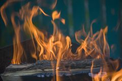 Close-up of fire and flames on a blurred natural background. Close-up of fire and flames on a black background, design, abstract, frame, pattern, texture, nature stock photography