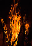 Close up of fire flames Royalty Free Stock Photography