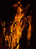 Close up of fire flames Stock Photo