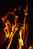 Close up of fire flames Stock Photography
