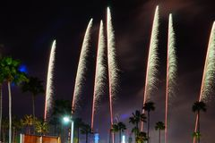 Close Up Fireworks in disney. Fireworks, light and palm tree in disney park Royalty Free Stock Photography