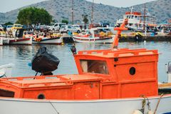 Close up of fishing boats in the marina. Crete Island, Greece Royalty Free Stock Photography