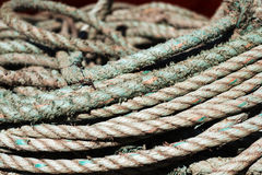 Close up of fishing ropes coiled up stock image