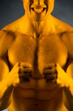 Close up of fit muscular man with golden skin. Stock Photo