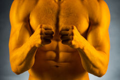 Close up of fit muscular naked male body. Stock Photos