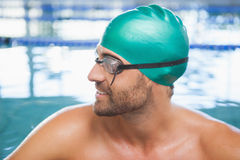Close up of a fit swimmer in the pool Royalty Free Stock Image