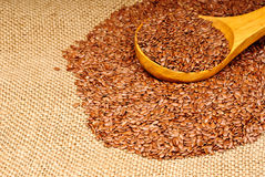 Close up of flax seeds Stock Images