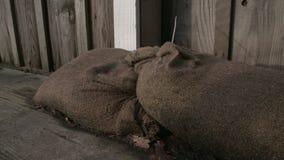 Close Up Flood Protection Sandbags dolly shot 4K UHD. stock footage