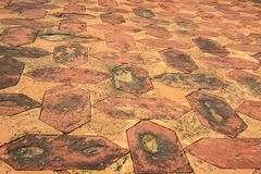 Floor tile pattern at Taj Mahal in Agra, India. Close up floor tile in Taj Mahal in India for abstract background pattern Stock Photos