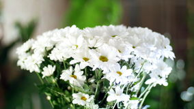 Close-up, flower bouquet in the rays of light, rotation, the floral composition consists of white Chrysanthemum. Chamomile bacardi. In the background a lot of stock video
