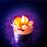 Close up of flower candle Stock Images
