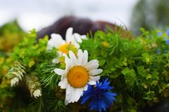 Close up of flower wreath stock photos