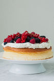 Close up of fluffy Japanese cheesecake with wipped cream cheese Royalty Free Stock Image