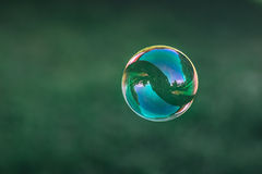 Close up of flying soap bubble. With great reflections. Flying over green background Stock Photography