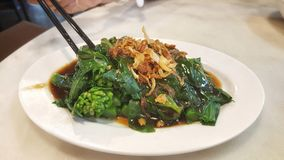 Close up and focus Kale fried in oyster sauce, delicious food Royalty Free Stock Photos