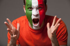 Close up of footbal fan. Italian footbal fan with painted face screamimg Royalty Free Stock Photo