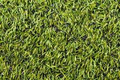Close up of football field Stock Photos