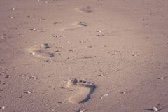 Close up footprints on sand beach in summer vacation seasonal in vintage style. stock images