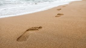 Close up of footprints in wet sand on the beach at sunset. stock image
