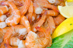Close up of a fountain of shrimp stock image