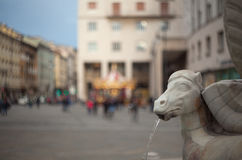 Close up of fountain Trieste Stock Photography