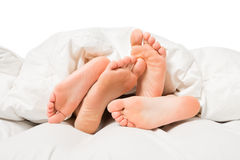Feet in a bed. Close up of four feet in a white bed Royalty Free Stock Image