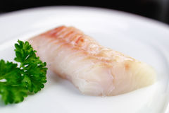 Natural Raw White Fish. Close-up of four uncooked herring fishs lying on white plate Royalty Free Stock Photos