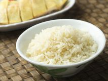Fragrant flavored hainan chicken rice Stock Photography