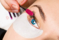 Close-up frame of a girl which paints eyelash royalty free stock photo