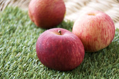 Close up fresh apple Stock Photography