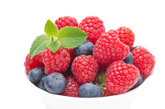 Close-up of fresh berries Royalty Free Stock Photos