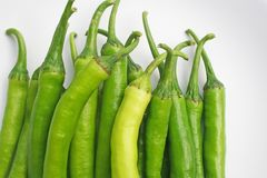 Fresh big green chilli. Close up Fresh big green chilli royalty free stock photos