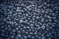 Close up of fresh blueberries as background. Top view. Concept of healthy and dieting eating royalty free stock photography