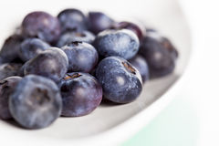 Close up of fresh blueberry on plate. Royalty Free Stock Images