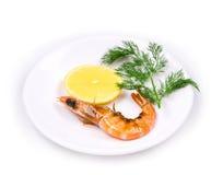 Close up of fresh boiled shrimp. Royalty Free Stock Photography