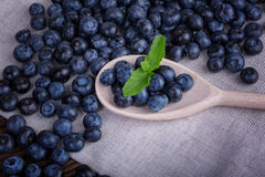 Close-up of fresh and bright blueberry in a wooden spoon. Healthy, ripe, raw dark blue berries with mint on a fabric background. Royalty Free Stock Photo