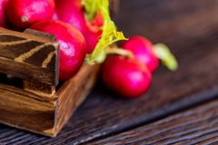 Fresh red radishes in wooden box close. Close up fresh bright red redishes in wooden box on dark wooden surface. Healthy diet concept, selective focus Royalty Free Stock Photography