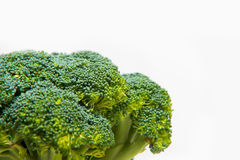 Close up on Fresh broccoli solated on a white background Royalty Free Stock Photo