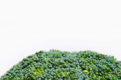 Close up on Fresh broccoli solated on a white background Stock Image