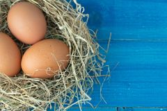 Close up of fresh brown chicken eggs in hay nest on blue wooden background. Concept of organic eggs, free space for text or other. Elements royalty free stock images