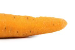 Close up of fresh carrot. Stock Photography